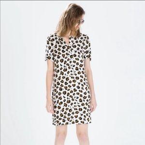 Zara Leopard Print Dress Shift Dress Short Sleeve